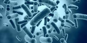 微生物燃料电池是一种通过电化学反应直接将化学能转化为电能的装置。与传统的燃料电池不同,微生物燃料电池不需要贵金属作催化剂,它仅使用生物体即可,而且是在比较温和的条件下,比如:常温、常压、接近中性的酸碱度。此外,微生物燃料电池在产生电能的同时还可以在一定条件下处理一些废物(比如废水、尿液等),近年来引起了科学家们的浓厚兴趣并取得了巨大的发展。